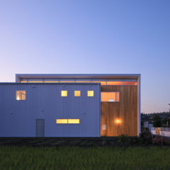 IDEA ARCHITECTS House with D